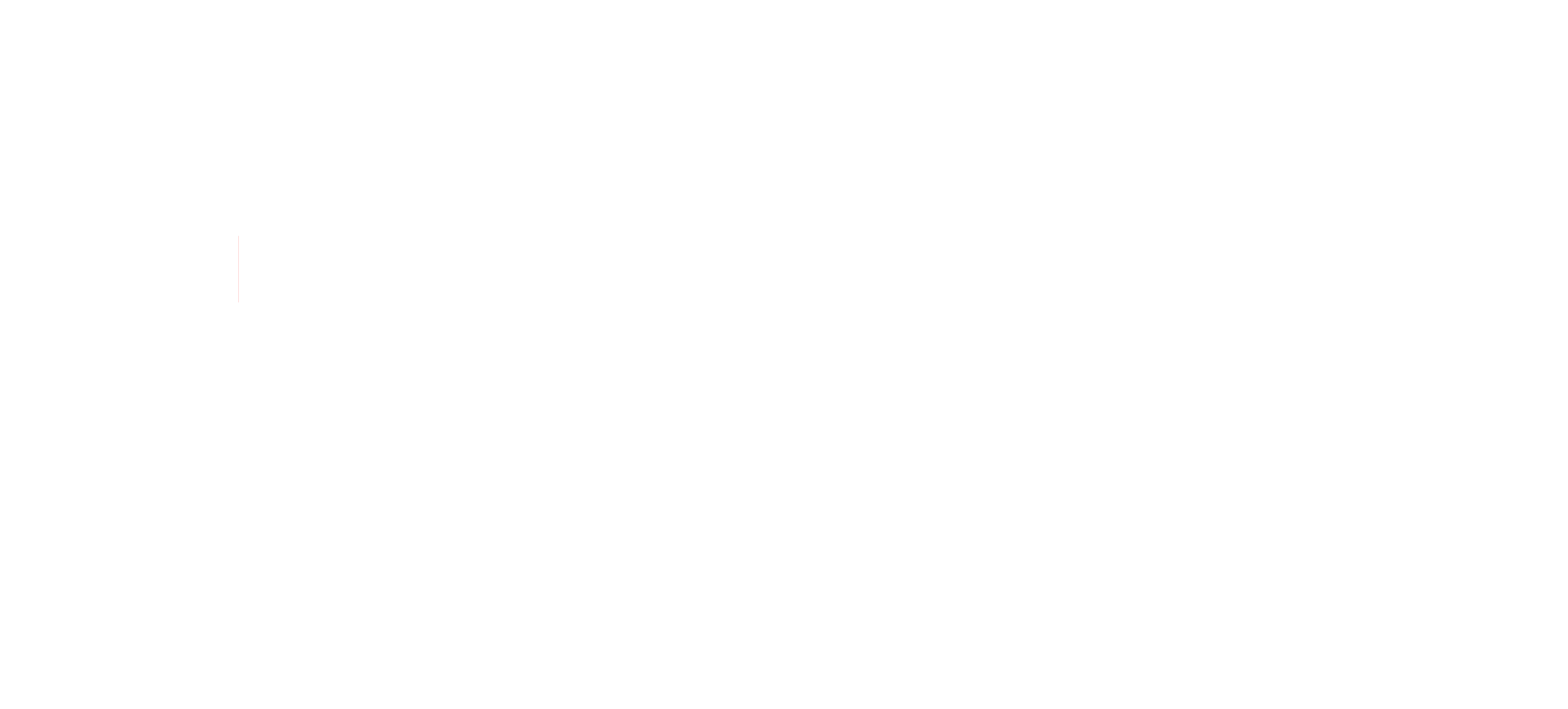 logo Leadinfo