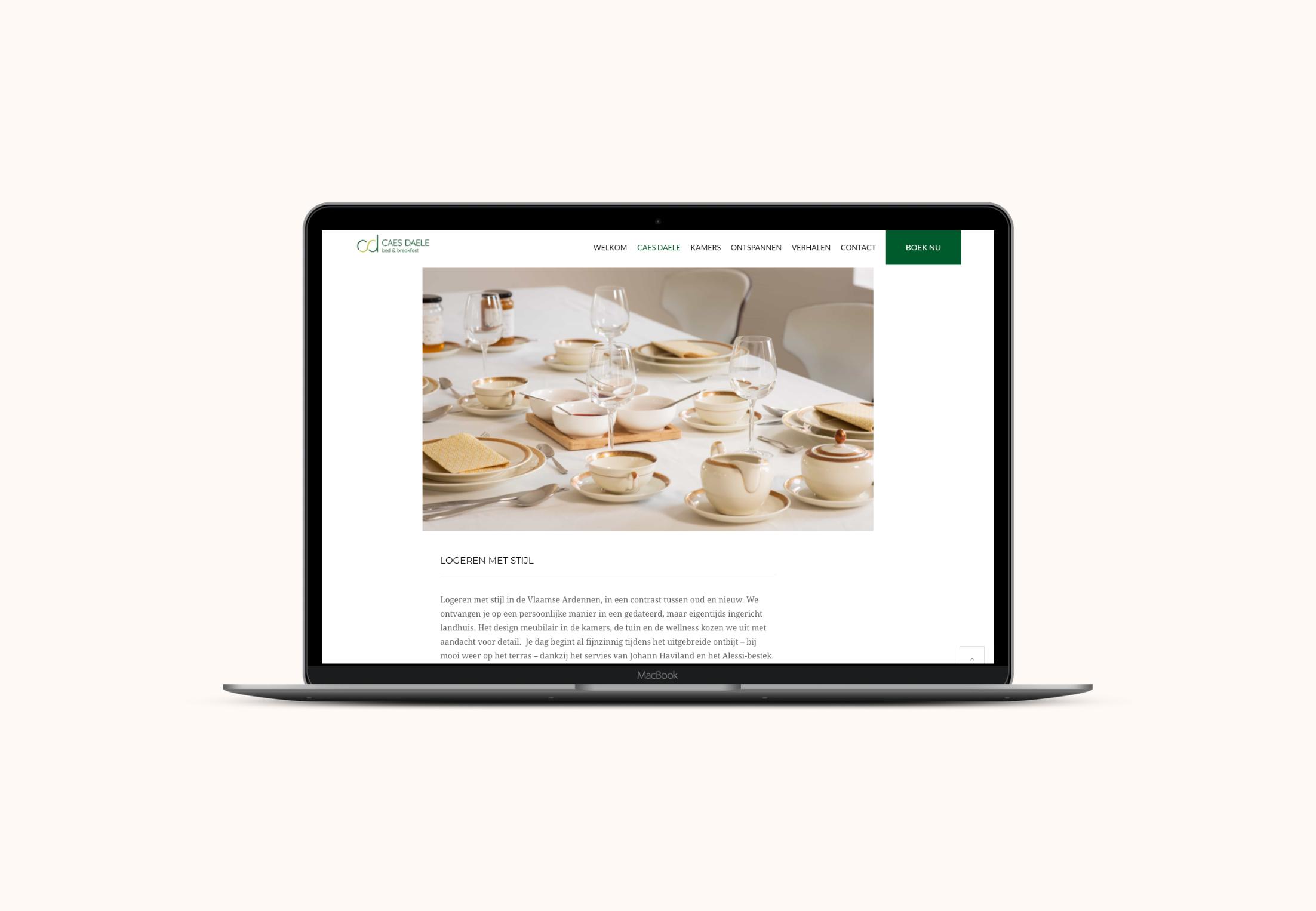 Website Caes Daele laptop view